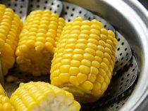 Ăn ngô không chỉ cực bổ dưỡng mà thực phẩm này còn được dùng để chữa ti tỉ bệnh vào ngày lạnh nữa!